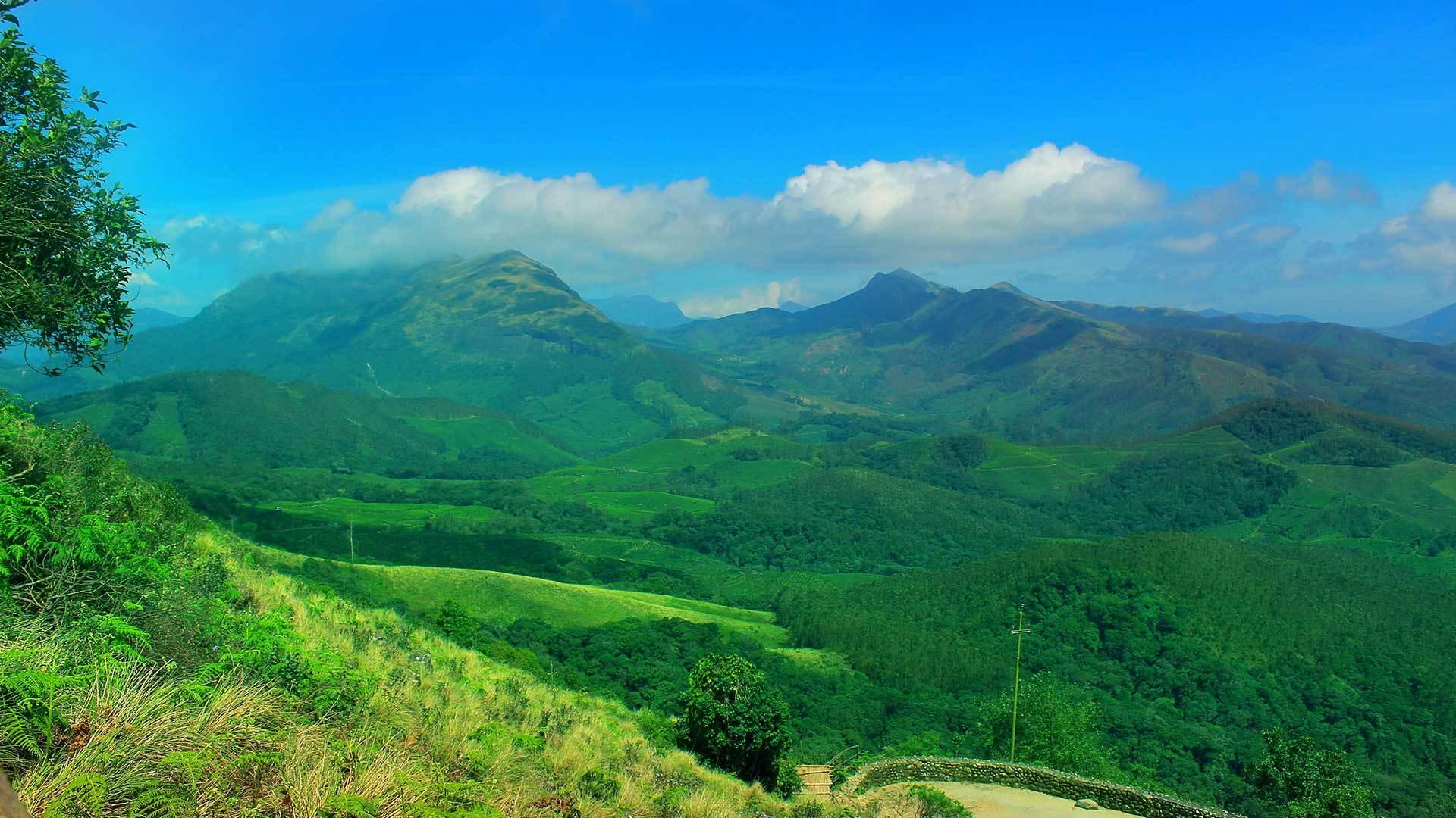 mounternakulam-national-park