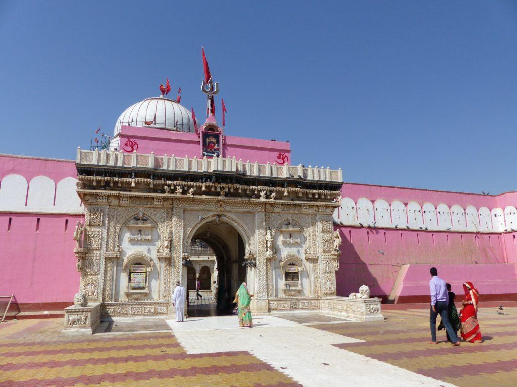 bikaner-karni-mata-rat-temple-karni-mata